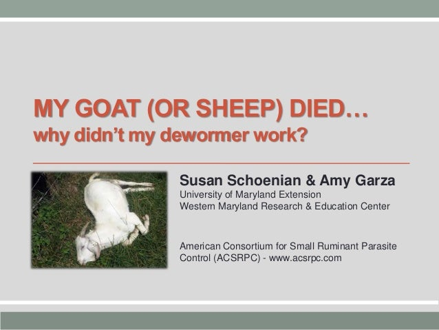 MY GOAT (OR SHEEP) DIED… why didn't my dewormer work? Susan Schoenian & Amy Garza University of Maryland Extension Western...