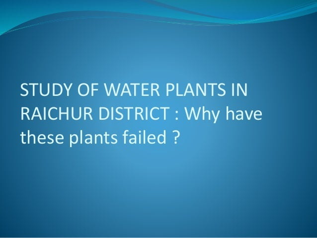 STUDY OF WATER PLANTS IN RAICHUR DISTRICT : Why have these plants failed ?