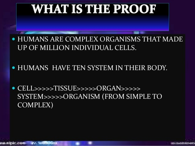 A human is a complex organism