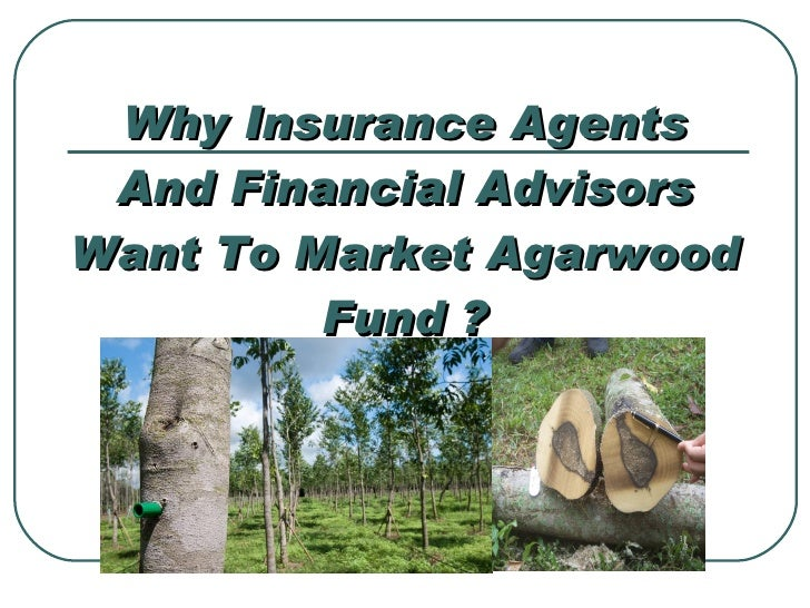 Why Insurance Agents And Financial Advisors Want To Market Agarwood Fund ?