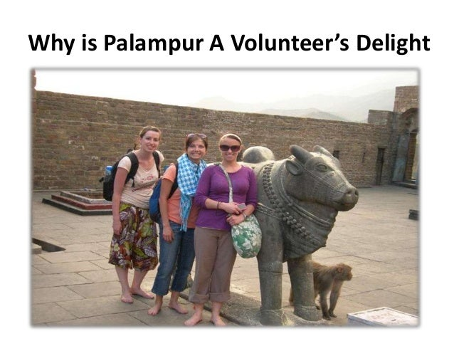 Why is Palampur A Volunteer's Delight