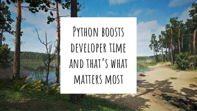 Python boosts developer time and that's what matters most
