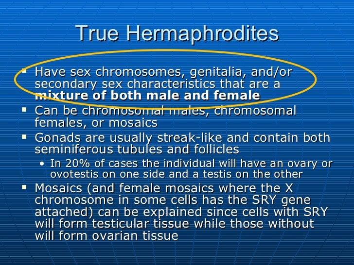 Hermaphrodites Have Sex 89