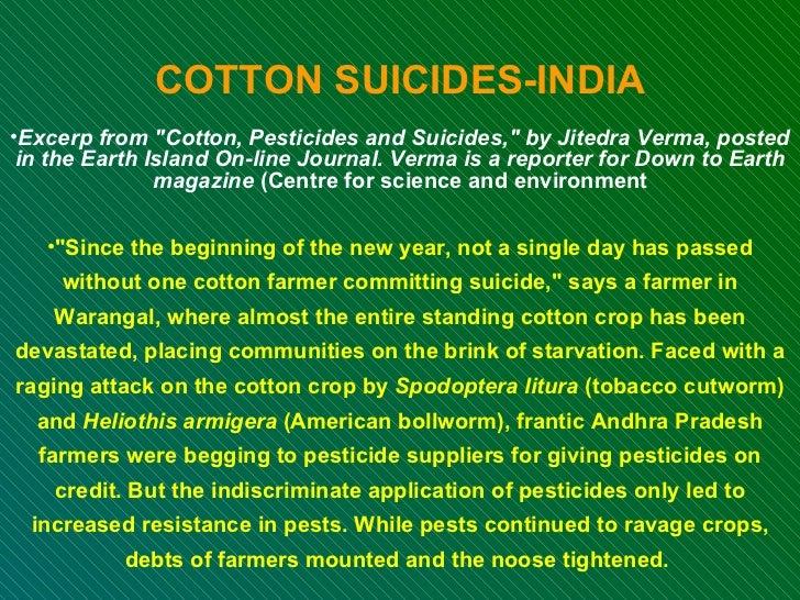 <ul><li>COTTON SUICIDES-INDIA </li></ul><ul><li>Excerp from &quot;Cotton, Pesticides and Suicides,&quot; by Jitedra Verma,...