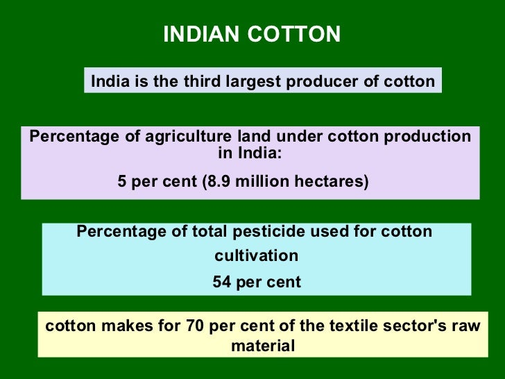 INDIAN COTTON India is the third largest producer of cotton Percentage of agriculture land under cotton production in Indi...