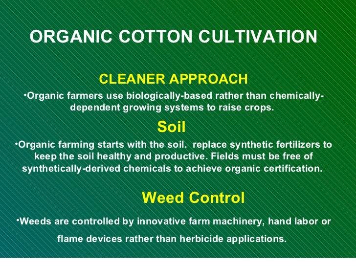 <ul><li>ORGANIC COTTON CULTIVATION </li></ul><ul><li>CLEANER APPROACH </li></ul><ul><li>Organic farmers use biologically-b...