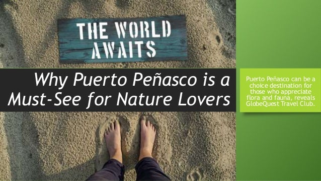 Why Puerto Peñasco is a Must-See for Nature Lovers Puerto Peñasco can be a choice destination for those who appreciate flo...