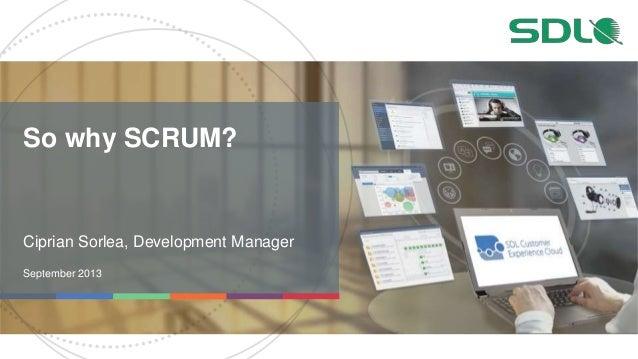 So why SCRUM? Ciprian Sorlea, Development Manager September 2013