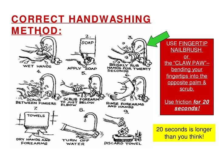 Fda Food Service Glove Use