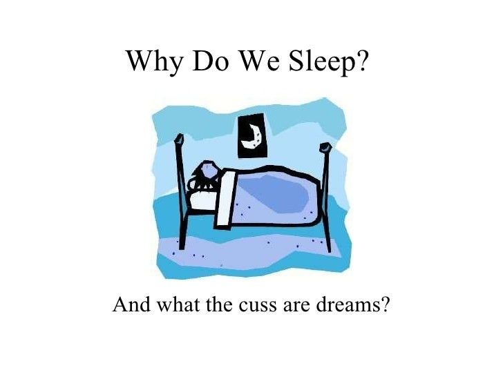 Why Do We Sleep? And what the cuss are dreams for?