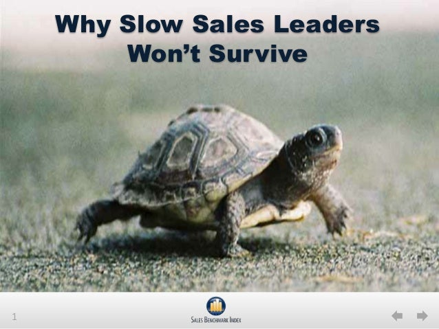 1Why Slow Sales LeadersWon't Survive