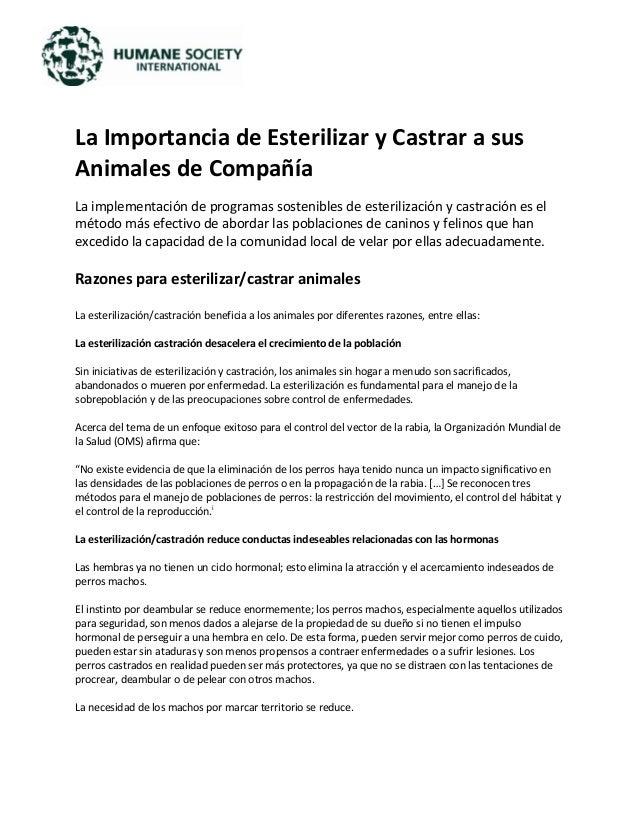 La Importancia de Esterilizar y Castrar a sus Animales de Compañía La implementación de programas sostenibles de esteriliz...