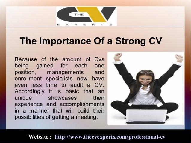 it professional cv writing