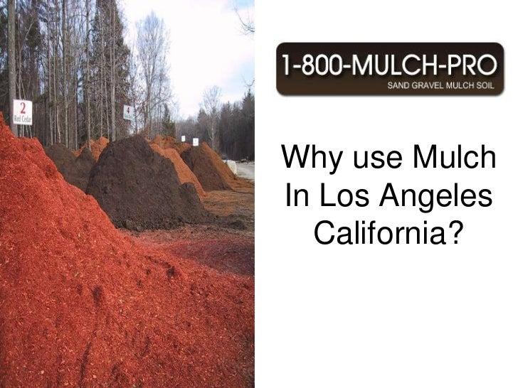 Why use Mulch In Los Angeles California? Los Angeles California has the best Mulch.  Using mulch can benefit your garden a...