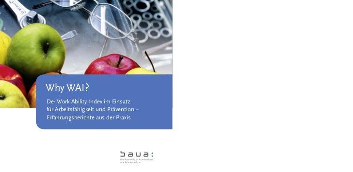 Why WAI?Der Work Ability Index im Einsatzfür Arbeitsfähigkeit und Prävention –Erfahrungsberichte aus der Praxis