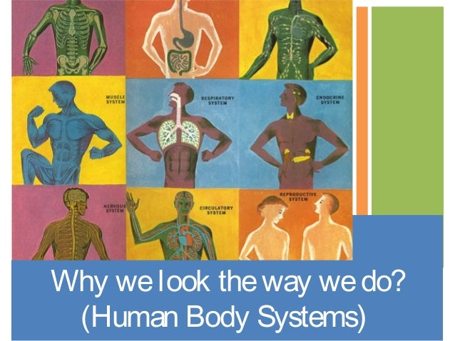 Why welook theway wedo? (Human Body Systems)