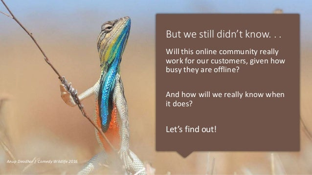 But we still didn't know. . . Will this online community really work for our customers, given how busy they are offline? A...