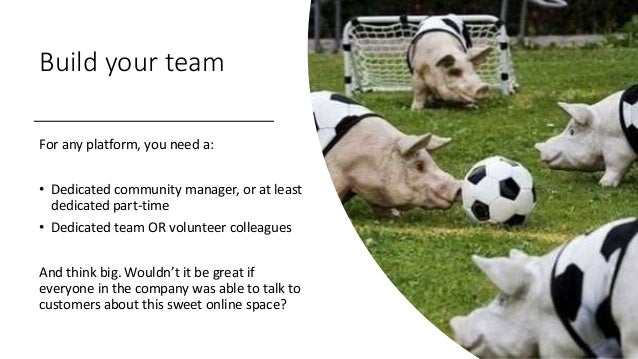 Build your team For any platform, you need a: • Dedicated community manager, or at least dedicated part-time • Dedicated t...