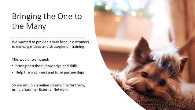 Bringing the One to the Many We wanted to provide a way for our customers to exchange ideas and strategies on training. Th...