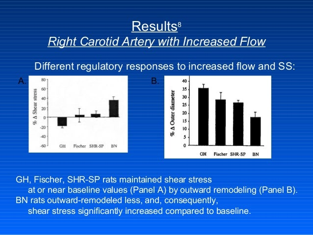 Results8 Right Carotid Artery with Increased Flow Different regulatory responses to increased flow and SS: GH, Fischer, SH...
