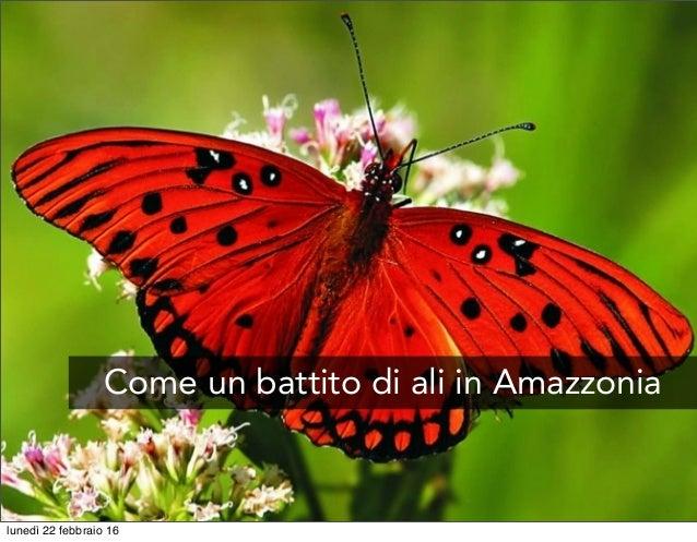 Come un battito di ali in Amazzonia lunedì 22 febbraio 16