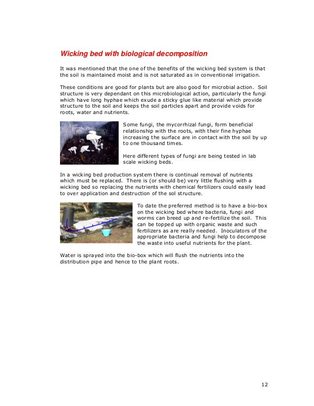 adapting to new technology essay Adapting to change 1 ask a technology specialist to explain the systems in place in your workplace on your first day of work or whenever a new system is implemented.