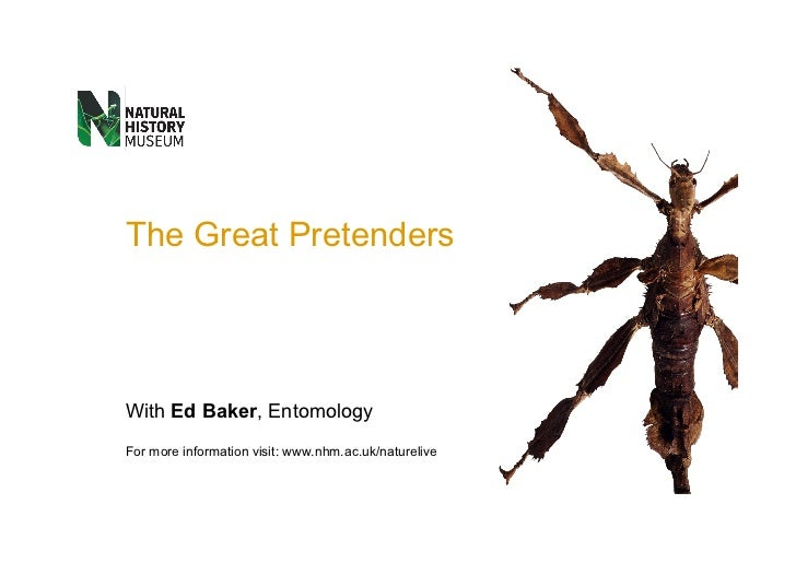 The Great Pretenders With  Ed Baker , Entomology For more information visit:  www.nhm.ac.uk/naturelive Information