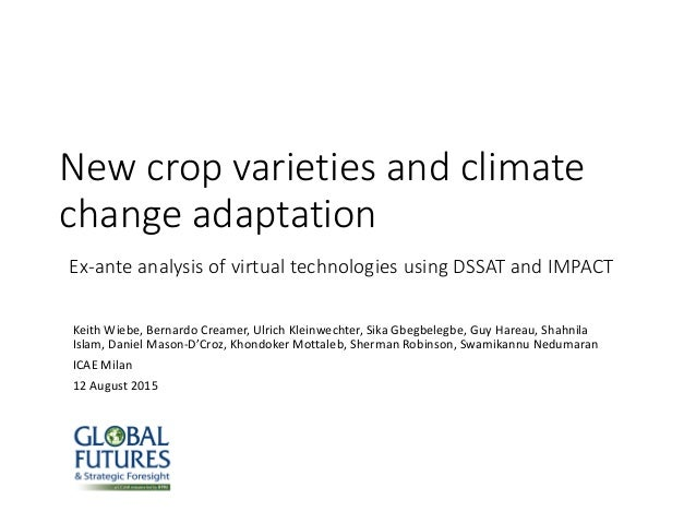 New crop varieties and climate change adaptation Ex-ante analysis of virtual technologies using DSSAT and IMPACT Keith Wie...