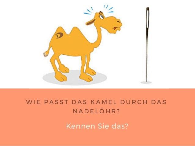 Kamel Durch Ein Nadelöhr