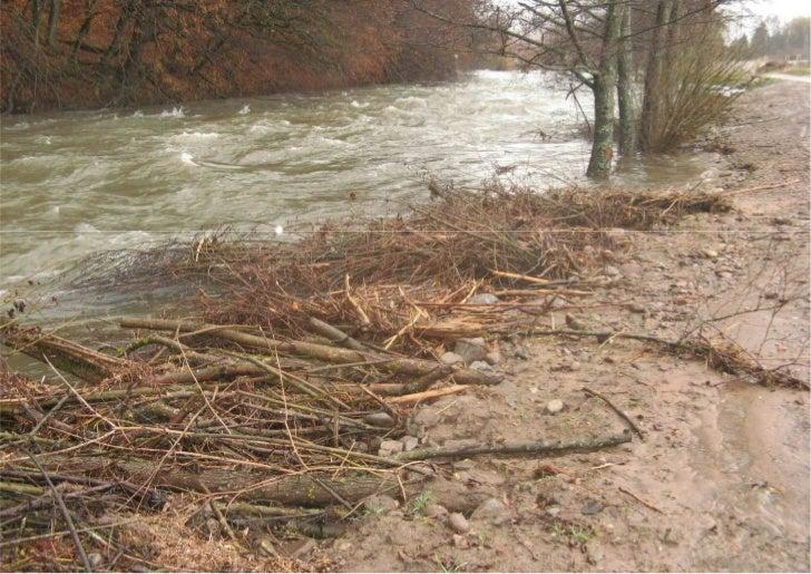 Wiese Maulburg bei ablaufendem Hochwasser Dez. 2011