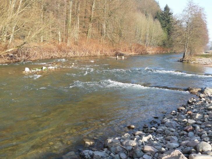 Schwarzwaldfluss Wiese in Maulburg nach dem Hochwasser: Teil 2