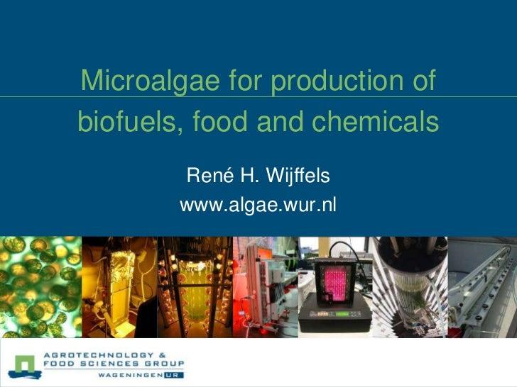 Microalgae for production of biofuels, food and chemicals<br />René H. Wijffels<br />www.algae.wur.nl<br />
