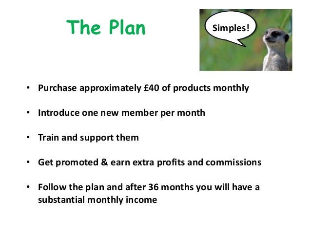 The Plan • Purchase approximately £40 of products monthly • Introduce one new member per month • Train and support them • ...