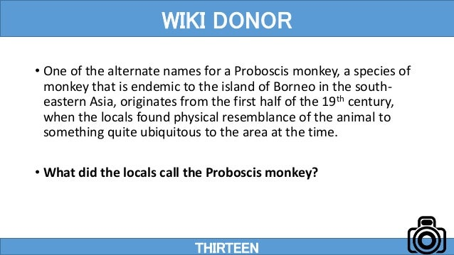 • One of the alternate names for a Proboscis monkey, a species of monkey that is endemic to the island of Borneo in the so...