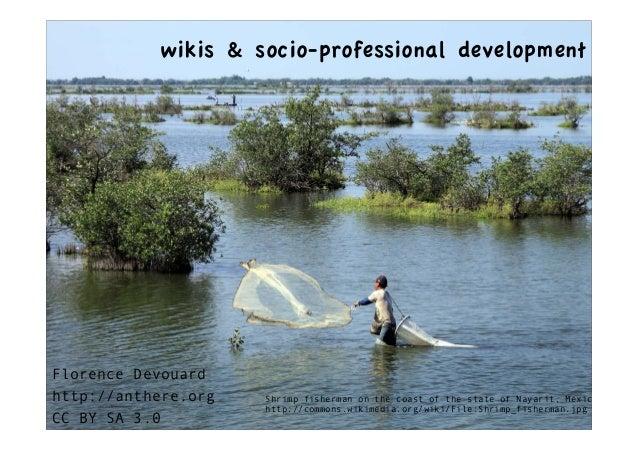 wikis & socio-professional development    How do wikis contribute        to learning and    professional developmentFloren...