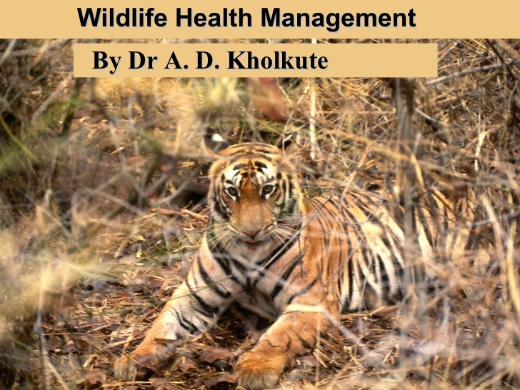 Wildlife Health Management By Dr A. D. Kholkute