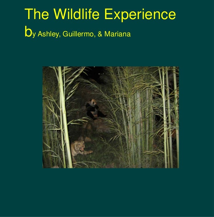 The Wildlife Experience<br />by Ashley, Guillermo, & Mariana<br />