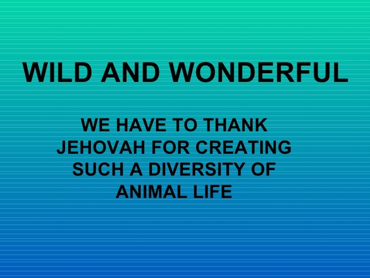 WILD AND WONDERFUL WE HAVE TO THANK JEHOVAH FOR CREATING SUCH A DIVERSITY OF ANIMAL LIFE