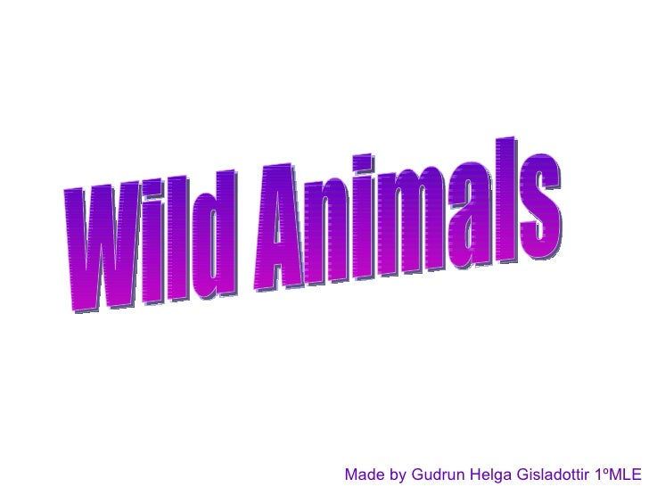 Wild Animals Made by Gudrun Helga Gisladottir 1ºMLE