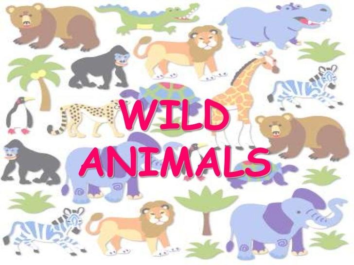 WILD ANIMALS<br />