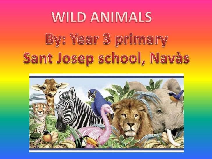 WILD ANIMALS<br />By: Year 3 primary<br />Sant Josep school, Navàs<br />