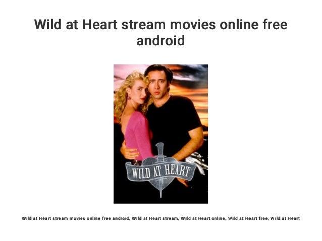Wild At Heart Stream