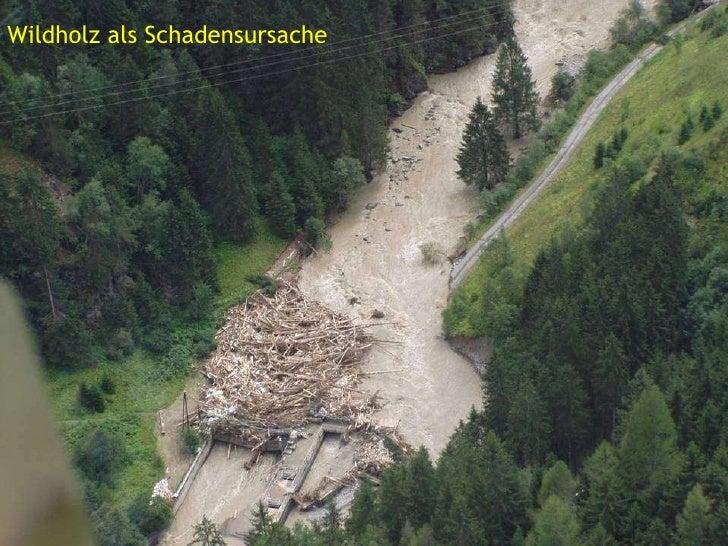 Wildbachbetreuung  Slide 2