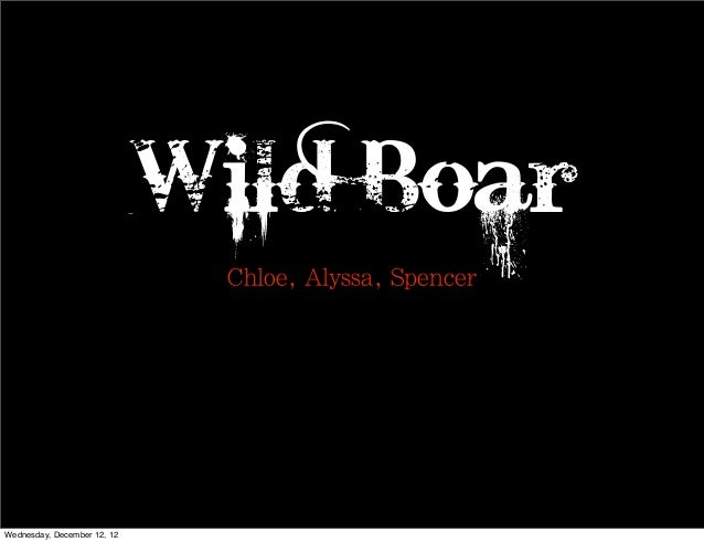 Wild Boar                              Chloe, Alyssa, SpencerWednesday, December 12, 12