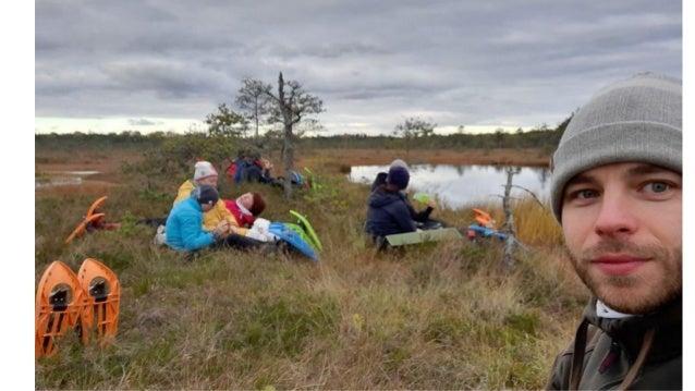 Wilderness in Estonia