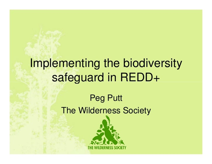 Implementing the biodiversity    safeguard in REDD+            Peg Putt     The Wilderness Society