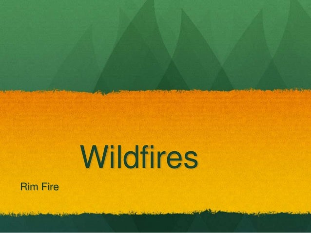 Wildfires Rim Fire