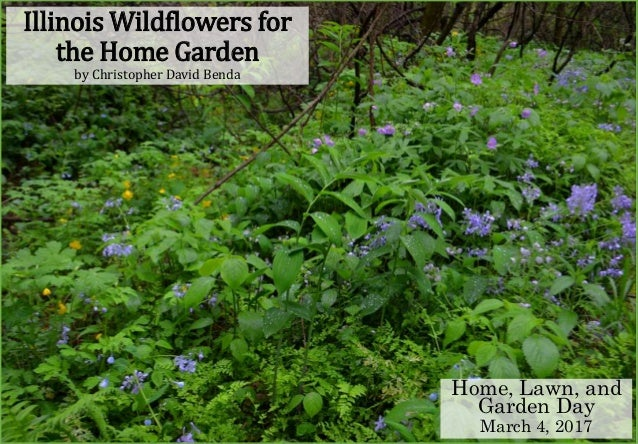 Illinois Wildflowers for the Home Garden by Christopher David Benda Home, Lawn, and Garden Day March 4, 2017