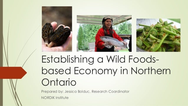 Establishing a Wild Foodsbased Economy in Northern Ontario Prepared by: Jessica Bolduc, Research Coordinator NORDIK Instit...