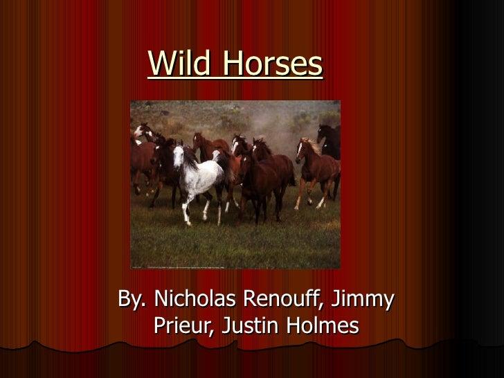 Wild Horses By. Nicholas Renouff, Jimmy Prieur, Justin Holmes